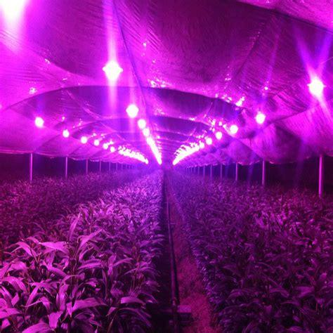 1pcs 150w spectrum led grow light ac85 265v indoor
