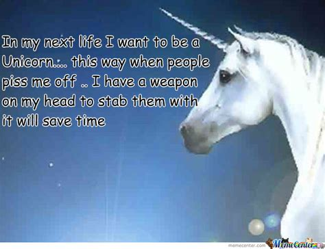 Unicorn Meme - funny unicorn memes www pixshark com images galleries