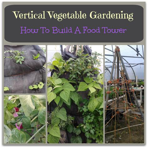 Vertical Gardening Ideas For Growing Vegetables   How To
