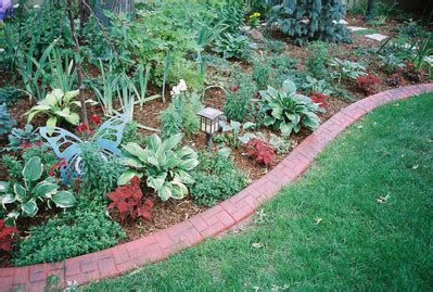 backyard borders landscape design for app landscaping ideas backyard eos group