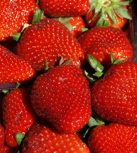 Strawberries Detox Mercury by 10 Signs You Need To Detox Kore Well Being
