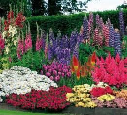 1001 conseils et mod 232 les pour cr 233 er une parterre de fleurs