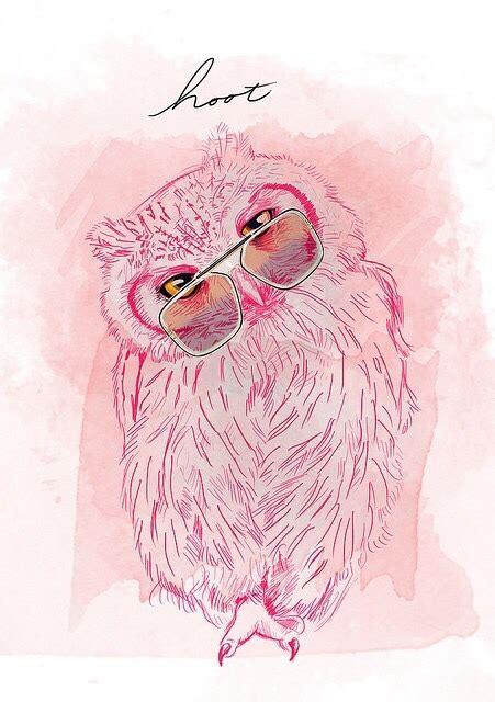 wallpaper tumblr owl owl wallpaper tumblr