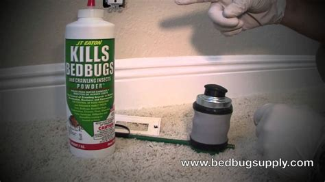powder to kill bed bugs jt eaton kills bed bugs powder review how to use youtube