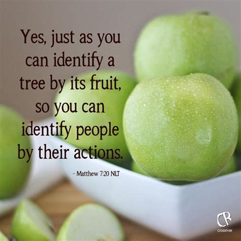 1000 images about fruit of spirit on a fruit - You Can Tell A Tree By The Fruit It Bears