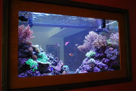 saltwater aquarium in wall 180 gallon in wall reef 200 gallon living reef custom aquarium double sided in wall
