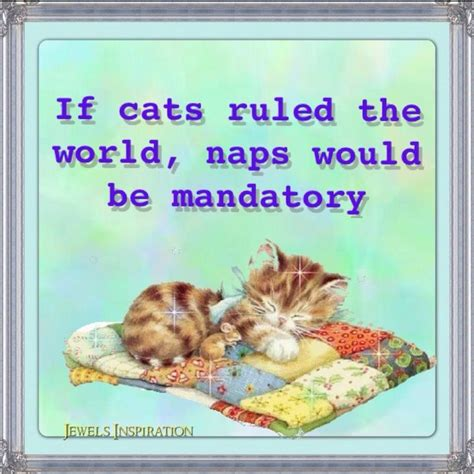 Rsby 103 Pajamas Robot 1000 images about 40 winks naps on cats story of my and puppys
