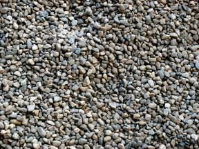 Easy Gravel Patio Dog Run Ideas How To Build A Backyard Dog Run Guide