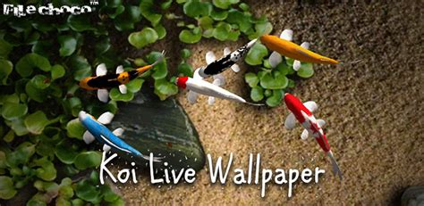 koi live wallpaper apk version free koi live wallpaper v1 9 apk 187 filechoco