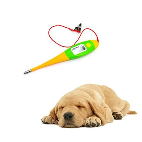 Thermometer Digital Animals thermometer ueetek digital pet animal thermometer