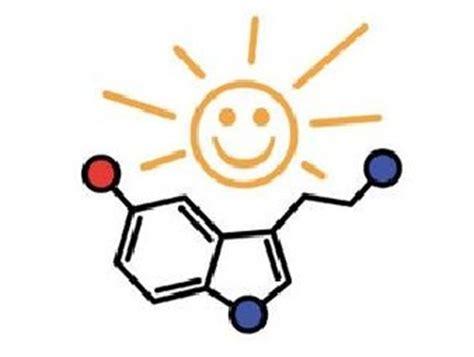 serotonina alimentazione serotonina l ormone rende felici e mette il buon umore