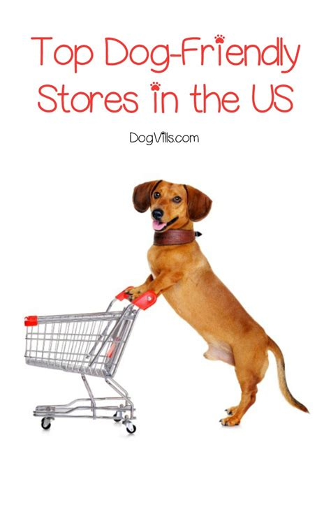 stores that allow dogs top friendly stores in the us dogvills