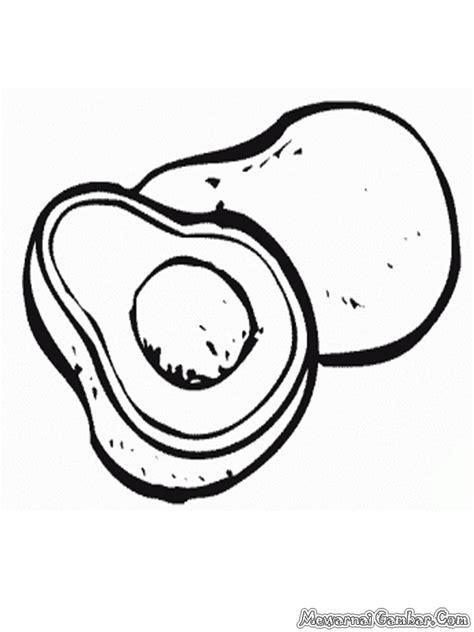 gambar mewarnai buah alpukat gratis mewarnai gambar