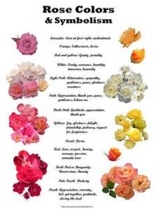 meaning of roses colors 1000 ideas about color meanings on