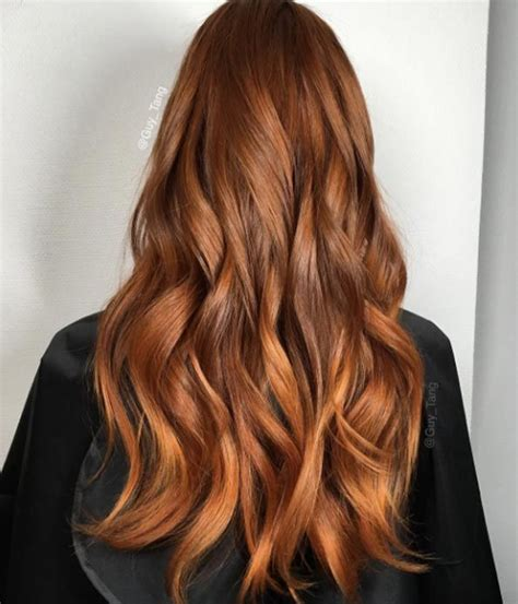 orange brown color brown orange hair color www pixshark