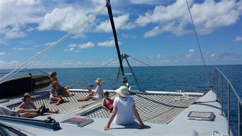 bermuda catamaran reviews 17 best images about rising son catamaran on pinterest