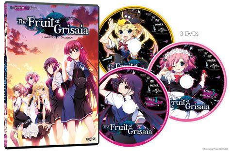 fruit of grisaia fruit of grisaia season 1 dvd