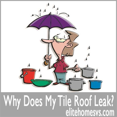roof leak roof leaks must be found before they can be