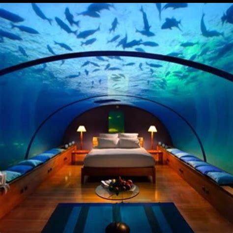 aquarium hotel room aquarium hotel room aquarium