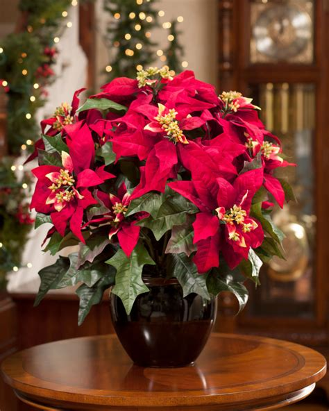 Decorations Poinsettia - plan to order your silk poinsettias early petals