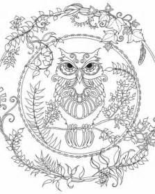 owl coloring pages for adults 17 best ideas about owl coloring pages on
