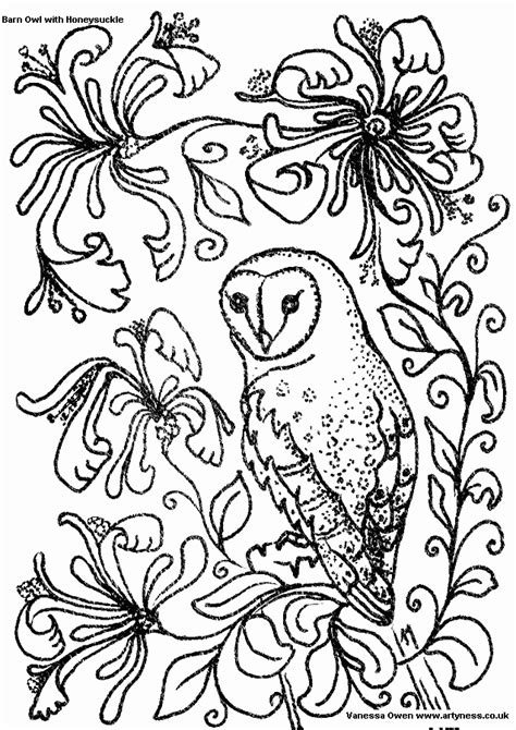 coloring page barn owl barn owl coloring pages az coloring pages