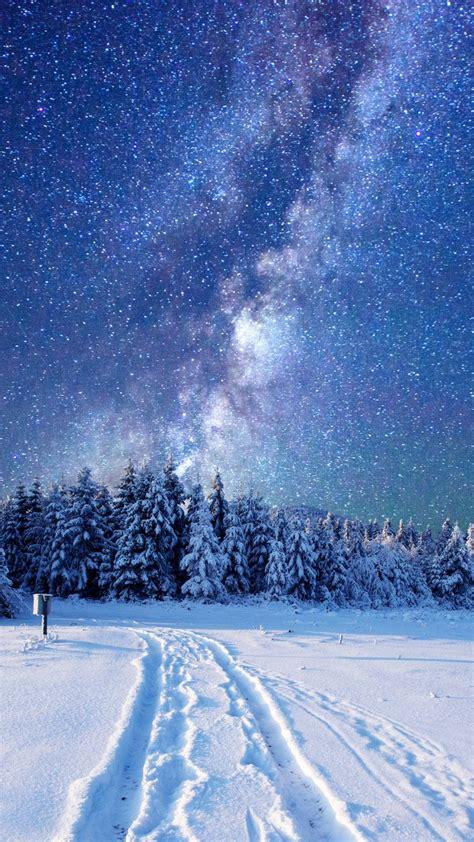 wallpaper forest snow winter sky stars night  nature