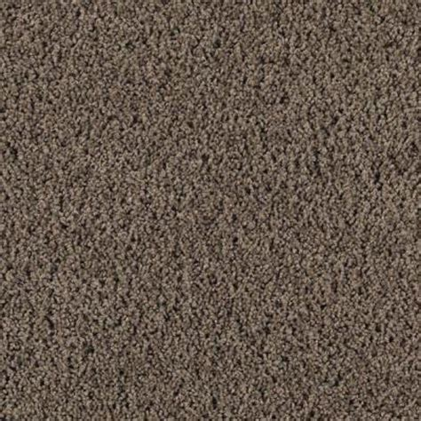 peat color lifeproof carpet sle ballet ribbon color peat moss
