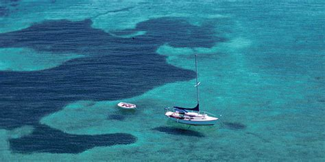 private boat to dry tortugas dry tortugas charters dry tortugas national park u s