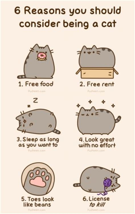 i am pusheen the cat mundie children s book review i am pusheen the