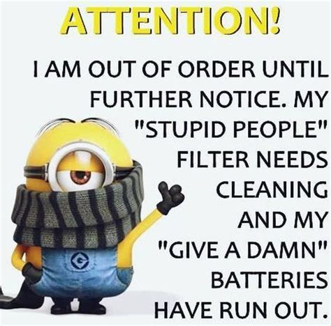 Funny Quotes For Memes - best 25 stupid people ideas on pinterest stupid people