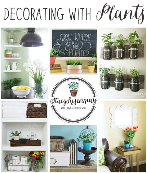 Decorating With Plants how to decorate with plants risenmay