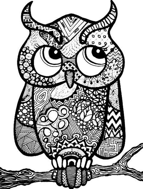 owl zentangle coloring page 419 best a owls images on pinterest owls coloring