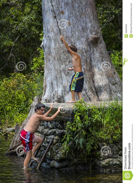 rope swings in florida brothers rope swing wacissa river fl stock image