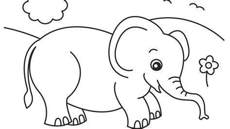 elephant coloring pages realistic animal coloring pages free printable coloring pages