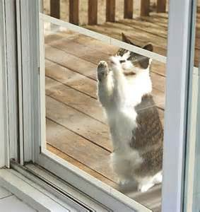 claws off patio screen door protector items i want to