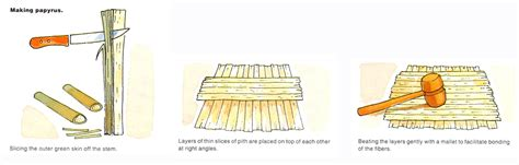 How Do You Make Papyrus Paper - image gallery papyrus