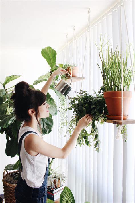 how to arrange indoor plants bringing the outdoors in indoor plant care new darlings