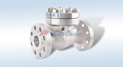 Neway Swing Check Valve Dancomech Holdings Berhad