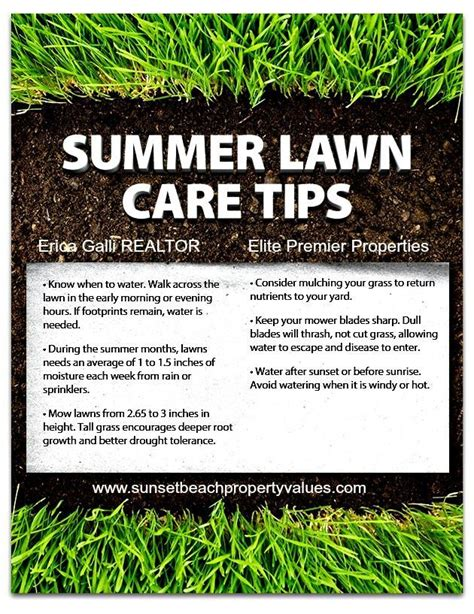 Summer Care 6 Useful Strategies by 1000 Images About Lawn Care On Lawn Care