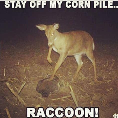 best 25 hunting jokes ideas on pinterest hunting humor