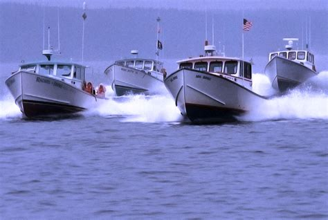 maine boats maine lobster boat racing be a spectator