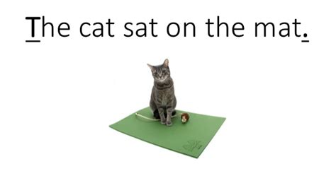 Cat Sat On The Mat by Sentences Capital Letters And Periods
