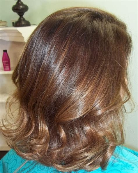 ecaille hair best 25 ecaille hair ideas on pinterest ecaille hair