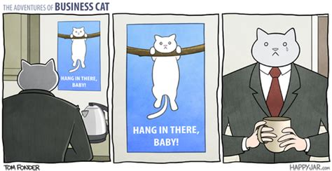 wallpaper business cat hang in there baby know your meme