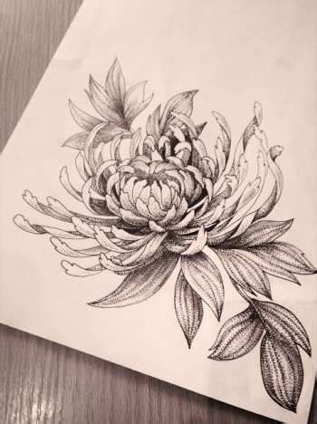 chrysanthemum flower tattoo 25 trending chrysanthemum ideas on