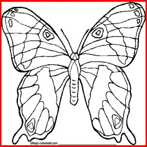 imajene de dibujo dibujo de mariposa para colorear e imprimir colorear website