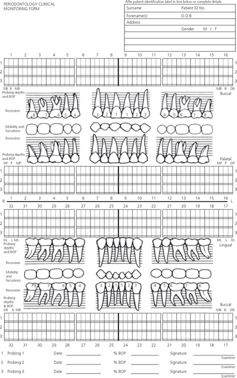 periodontal chart template 5 patient assessment pocket dentistry