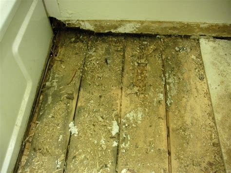 bathroom subfloor replacement repair a bathroom floor bathroom floors