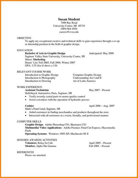 professional resume sle sle resume format